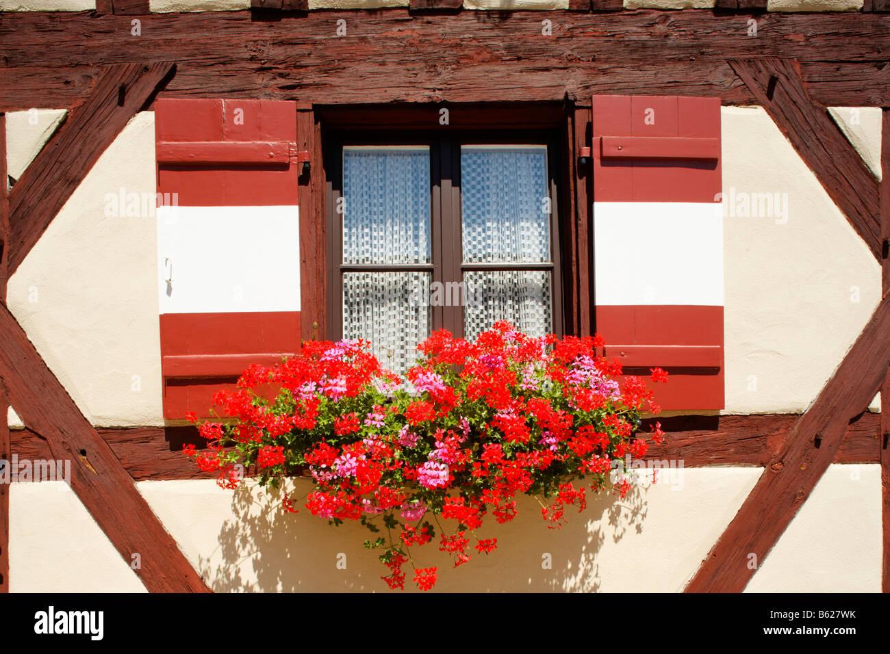Window, shutter, geraniums, Nuremberg Castle or Kaiserburg, fore-court, half-timbered, Nuremberg, Middle Franconia, - Stock Image