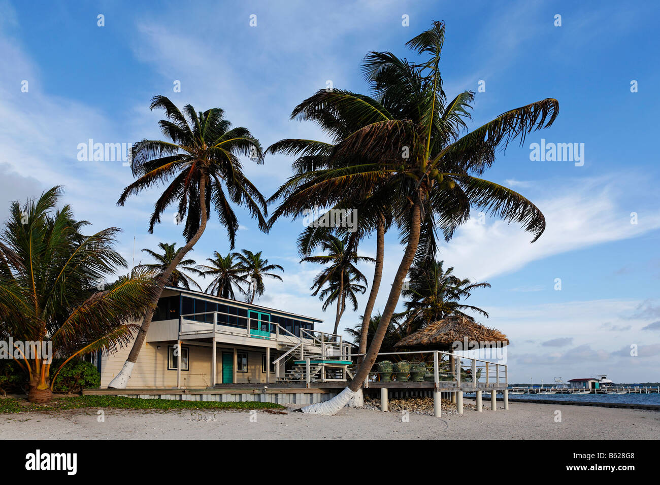 Bungalow, Turneffe Flats, Turneffe Atoll, Belize, Central America, Caribbean - Stock Image