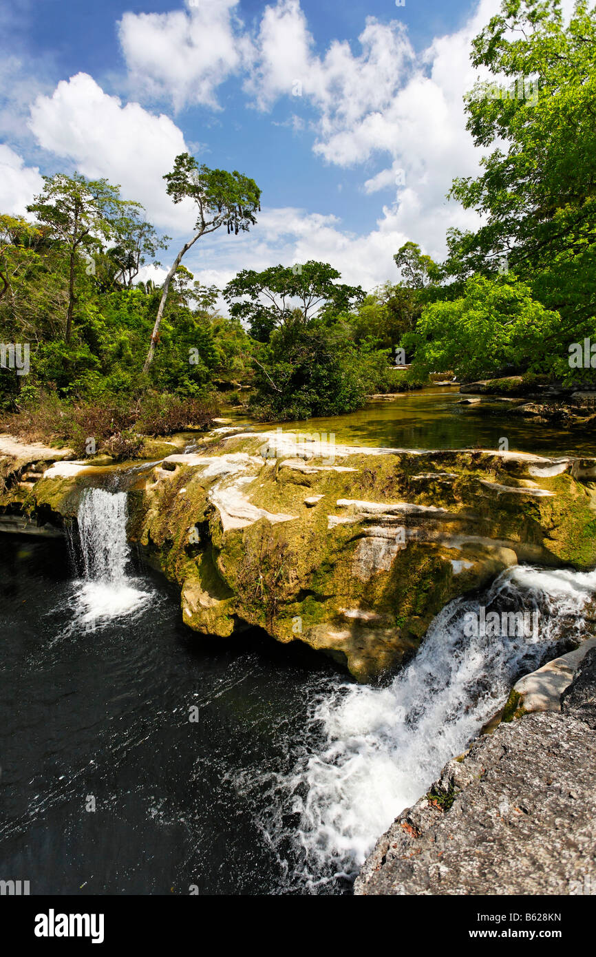 River course with two small waterfalls, primeval forest, rocks, Punta Gorda, Belize, Central America, Caribbean - Stock Image