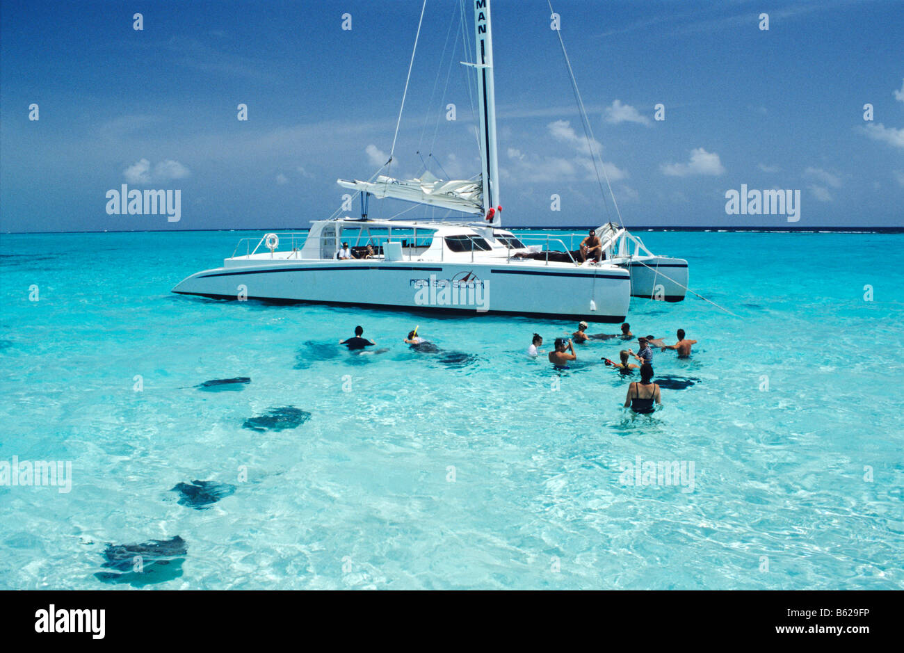 Tourists swimming with sting-rays, Stingray City, Grand Cayman, Cayman Islands, Caribbean, Central America - Stock Image