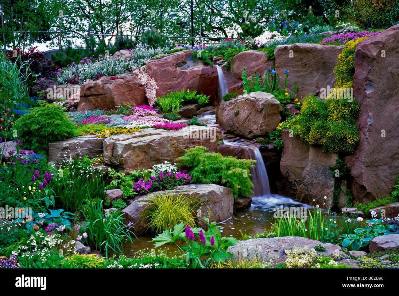 Colorful Alpine water garden in summer - Stock Image
