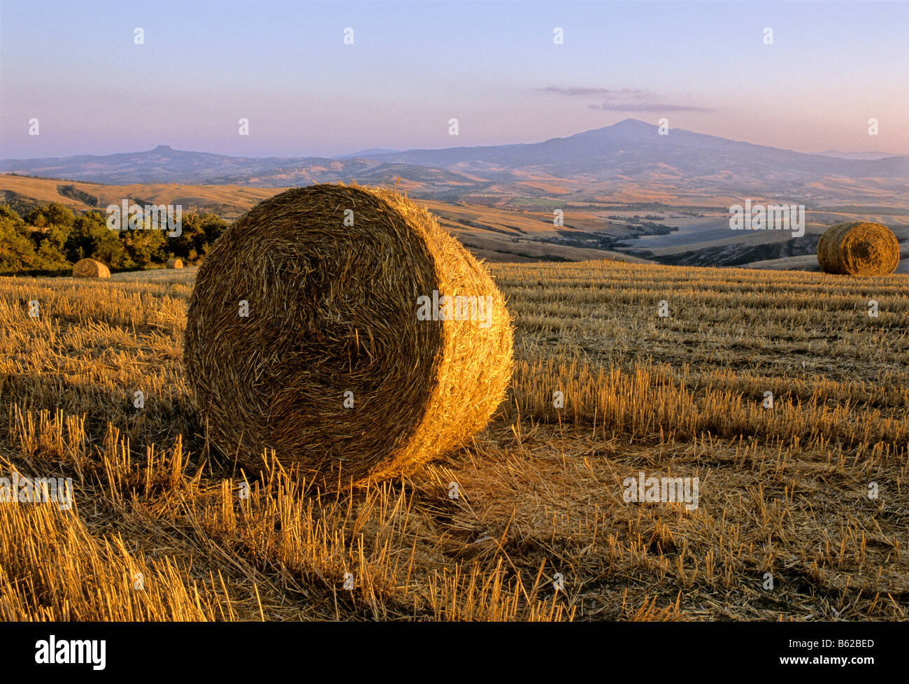 Bale of straw, harvested wheatfields, landscape around Radicofani and Monte Amiata at sunset, Val d' Orcia near Stock Photo