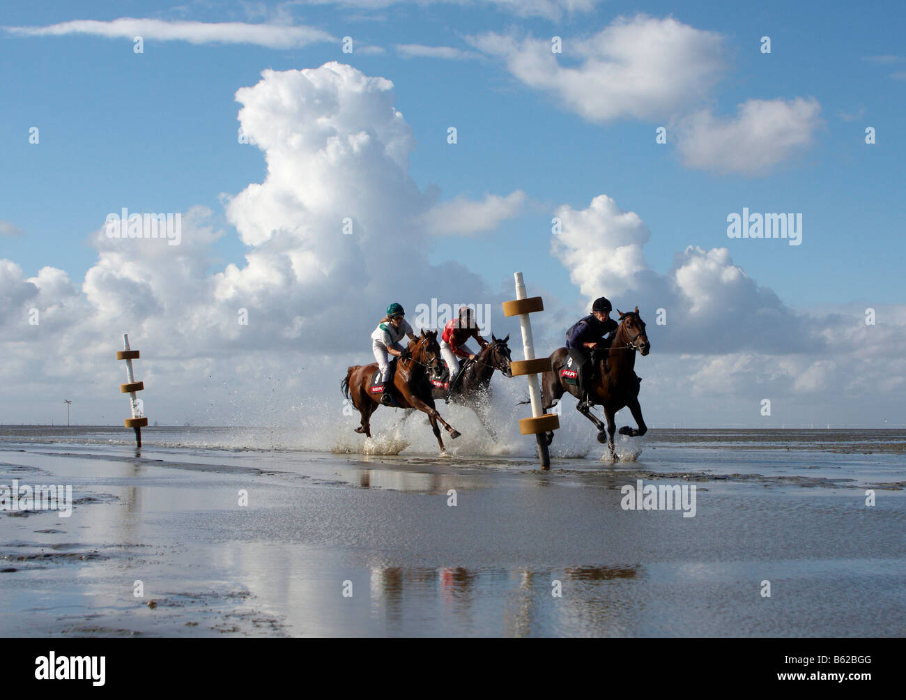 Riders, galloping, Duhner Wattrennen, Duhnen Trotting Races 2008, the only horse race in the world on the sea bed, - Stock Image