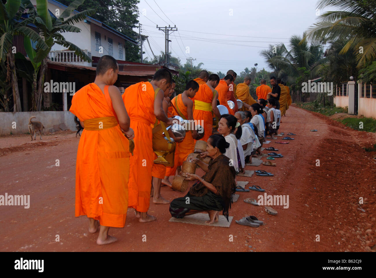 Buddhist monks getting rice at the morning alms-dealing, Wat Nakhoun Noi, Vientiane Province, Laos, Southeast Asia - Stock Image
