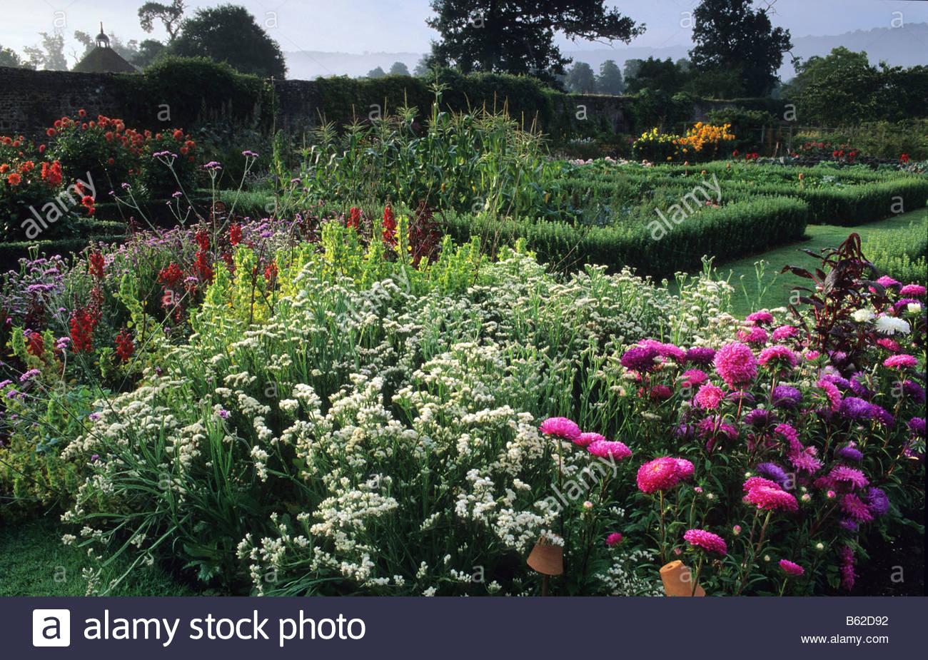 Garden Plant Combination Growing Edible Vegetable Kitchen Garden – Cut Flower Garden Plan