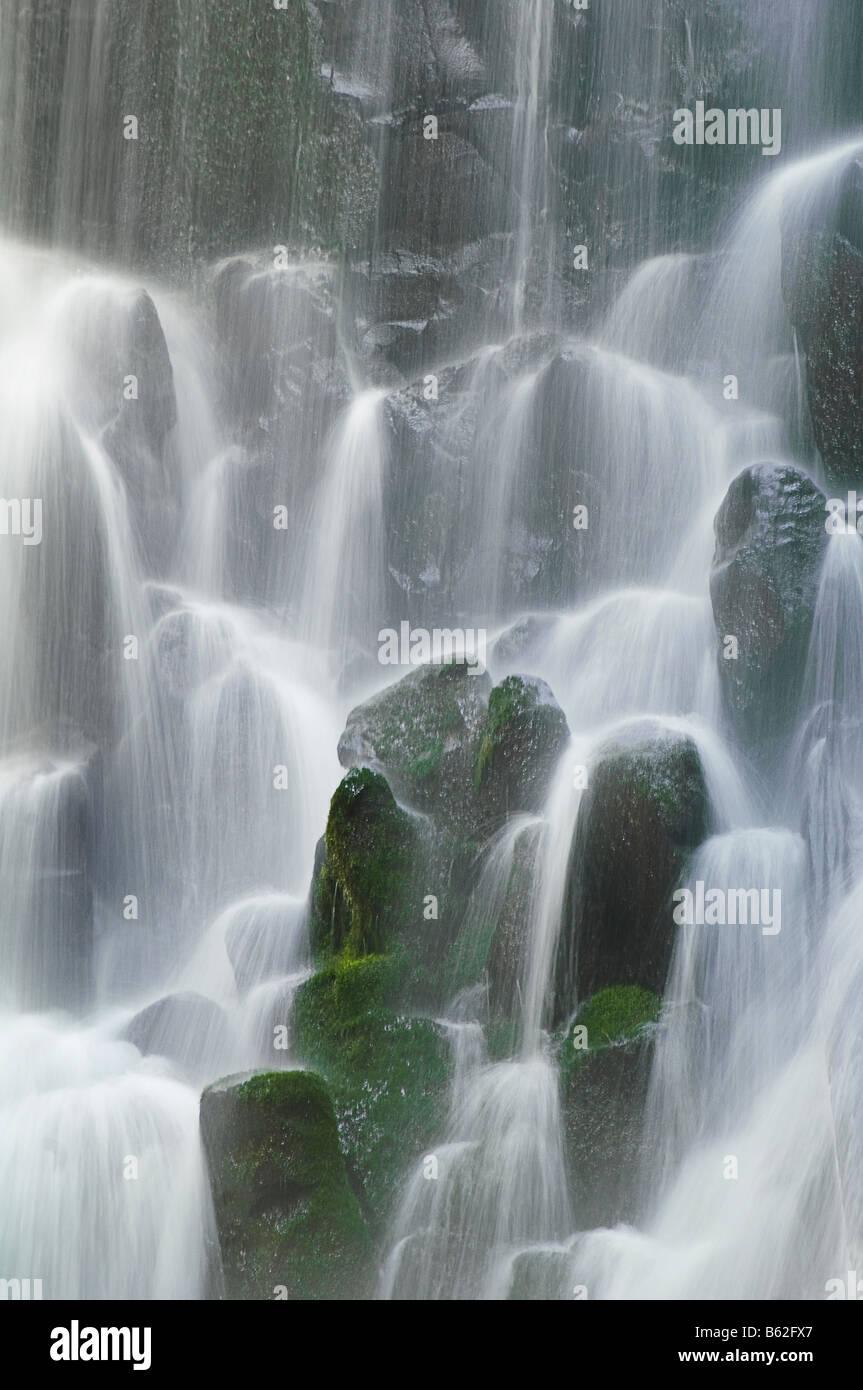 Ramona Falls Mount Hood Wilderness Oregon - Stock Image