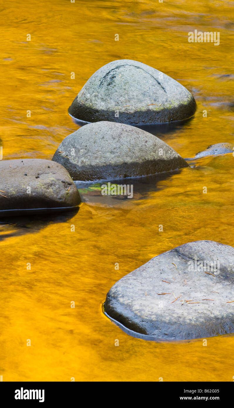 Reflections of Fall color on the Breitenbush River Willamette National Forest Oregon - Stock Image
