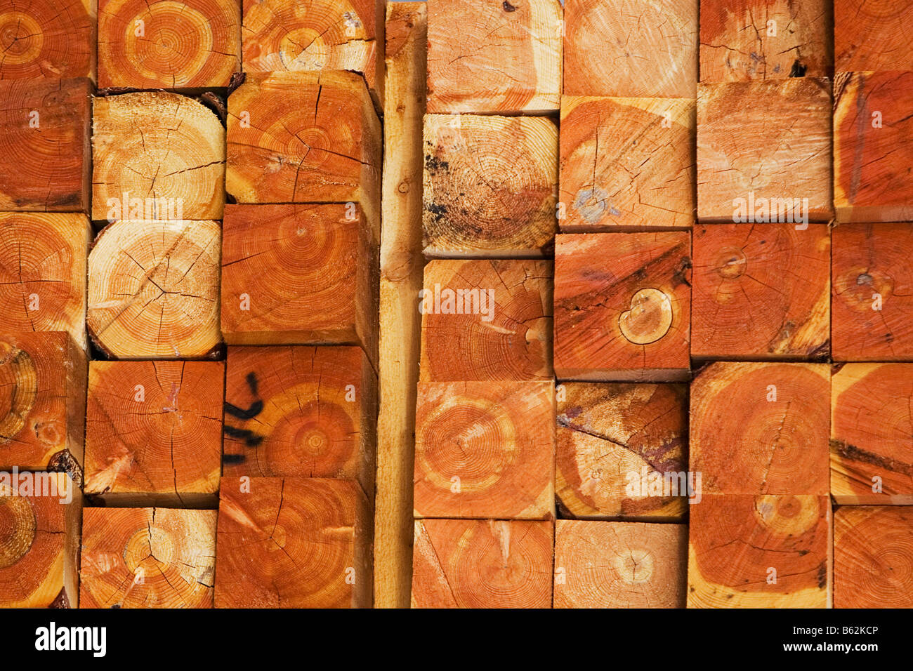 Close-up of a stack of timbers - Stock Image