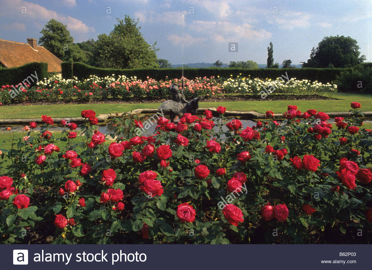 garden Surrey formal rose garden with water rill and ...