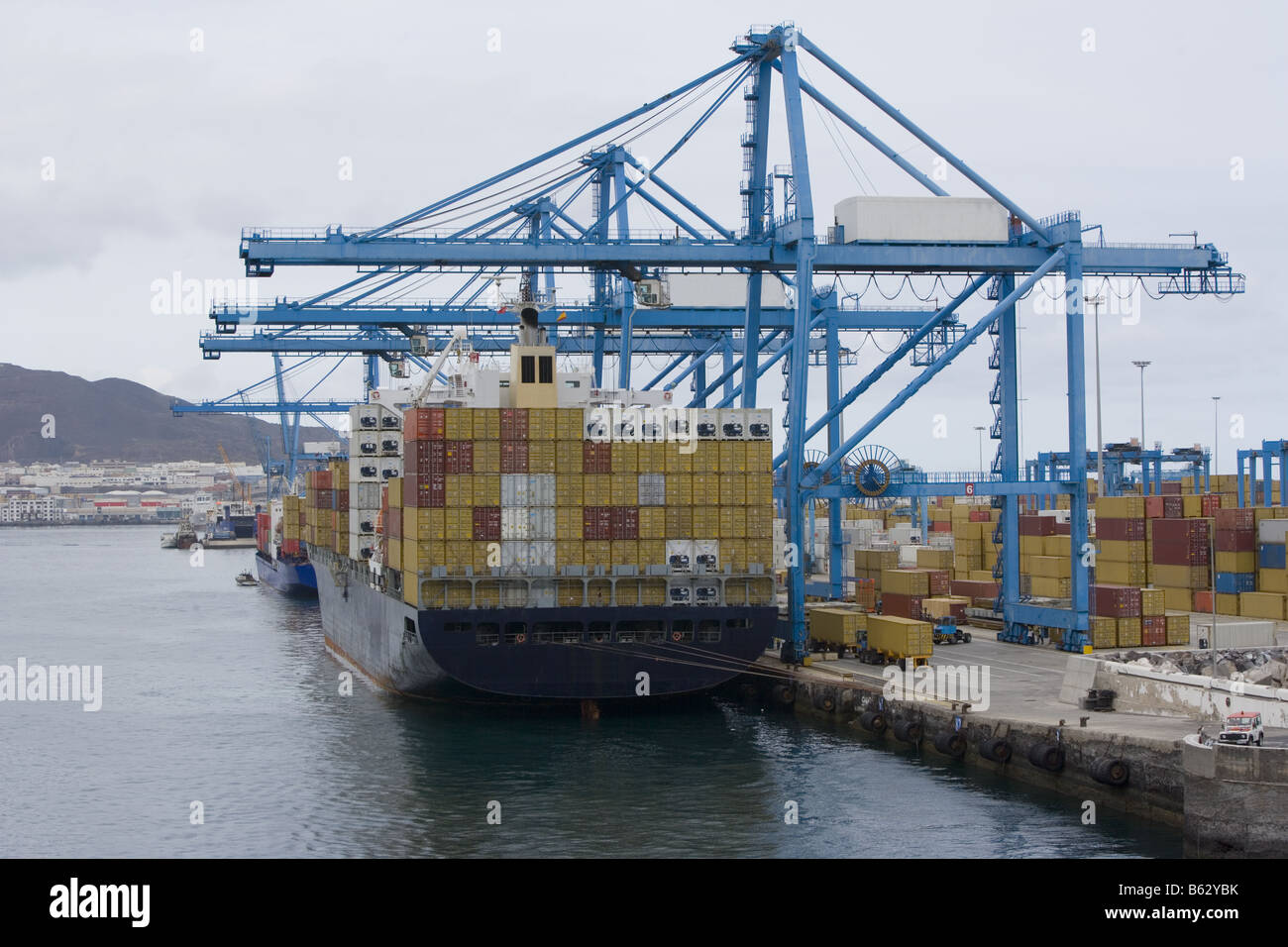 Bulk container ship in port  All names and logos have been