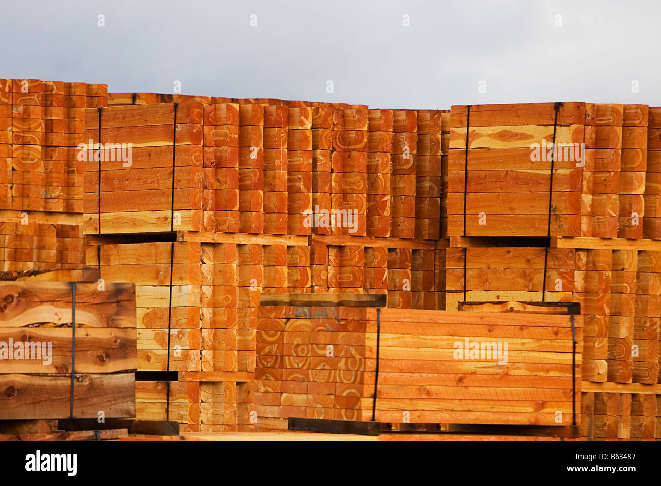 Stacks of timbers in a lumberyard - Stock Image