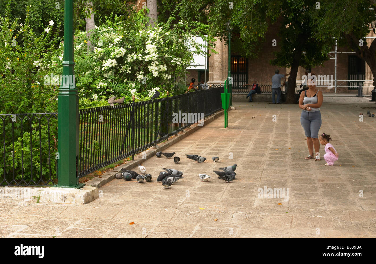 A cuban woman and a young girl feed the pigeons in one of havana's plazas, la habana vieja, cuba. - Stock Image