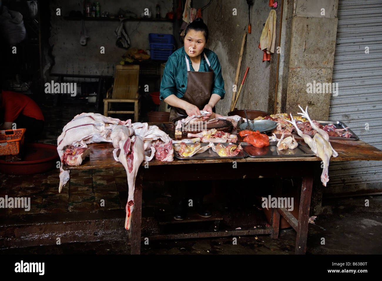 Chinese woman with slaughtered ducks on display on an open market, Yangshuo, China - Stock Image
