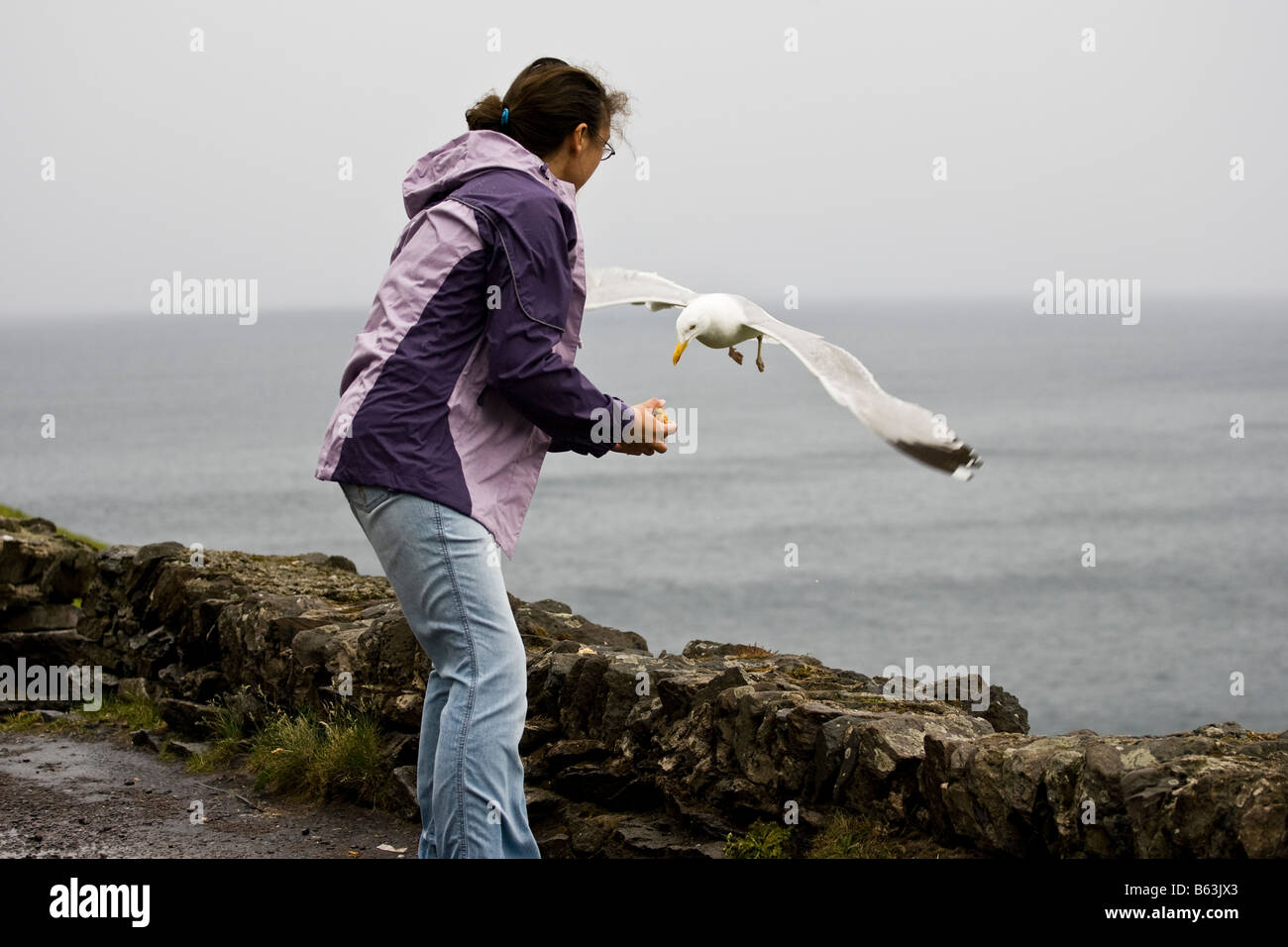 Girl feeding a seagull with bread on a dull grey day - Stock Image