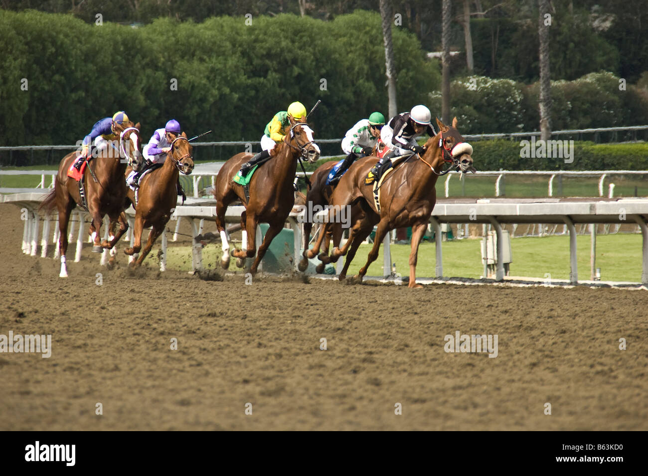 Horse race at Santa Anita Racetrack in Arcadia, CA. - Stock Image