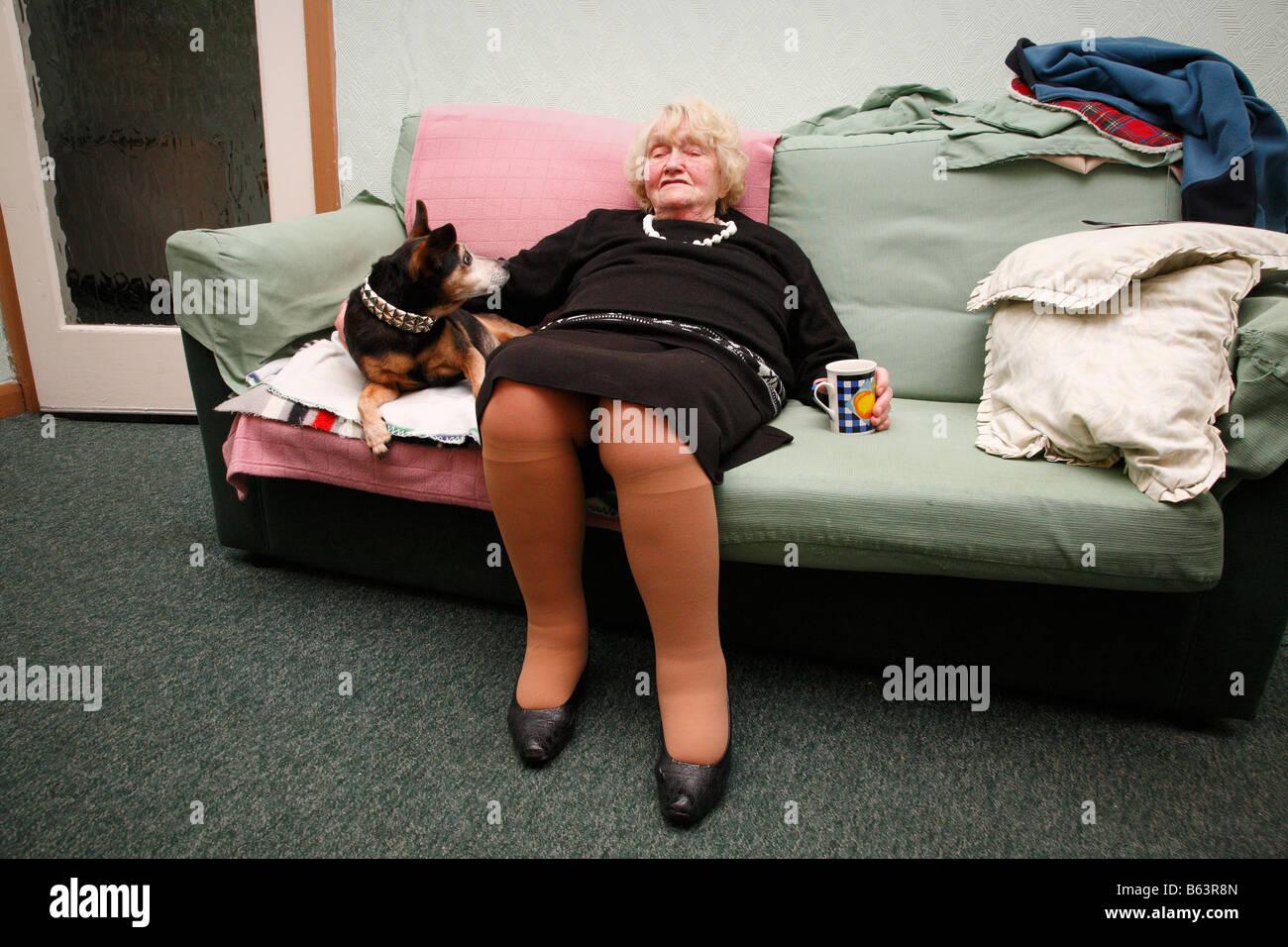 Old Woman Asleep On The Sofa With Dog Stock Photo 20982437 Alamy