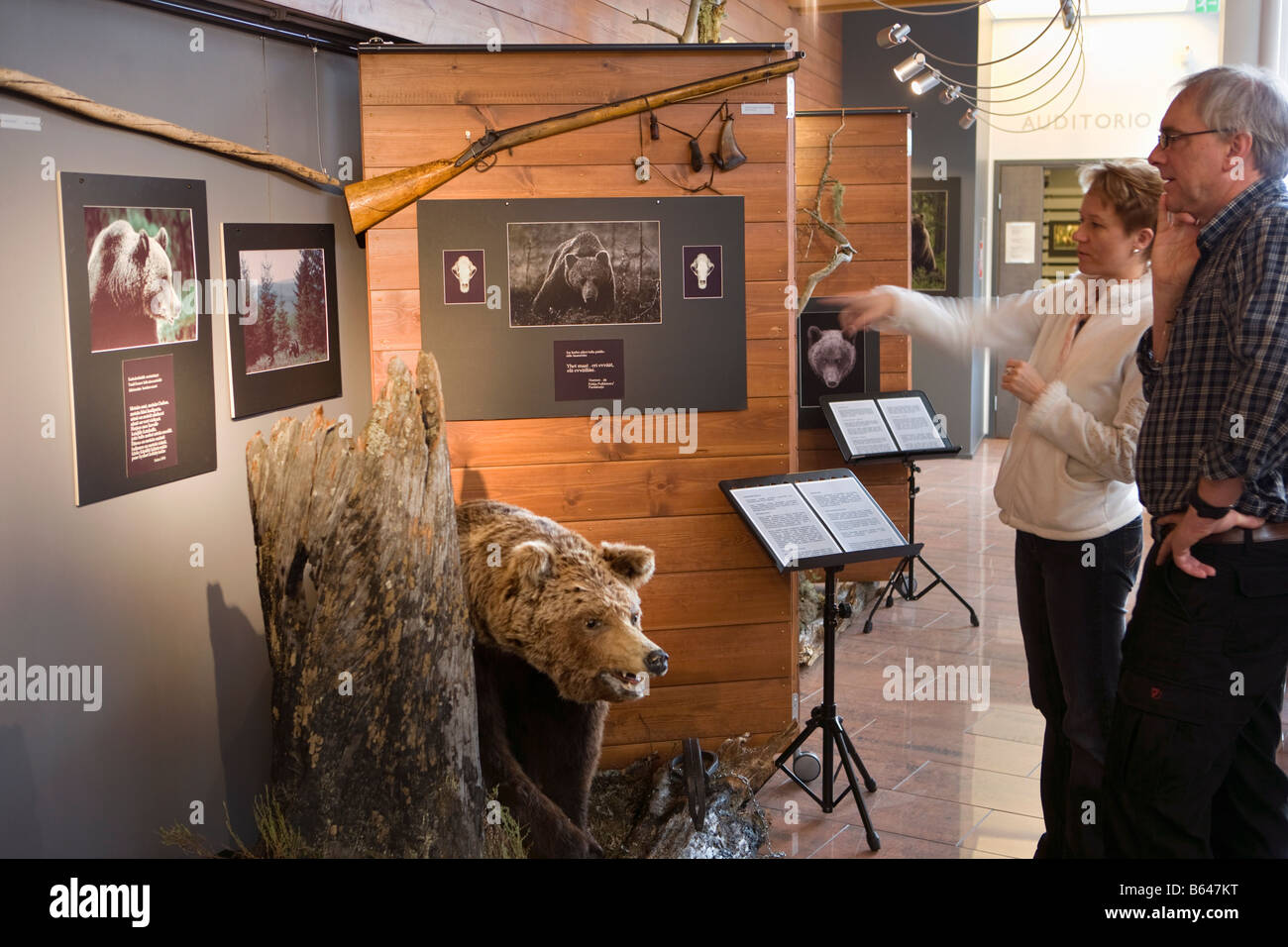 Finland, Kuhmo, Petola Visitor Center. Information about Finland's largest carnivores and preditors, like bear, Stock Photo