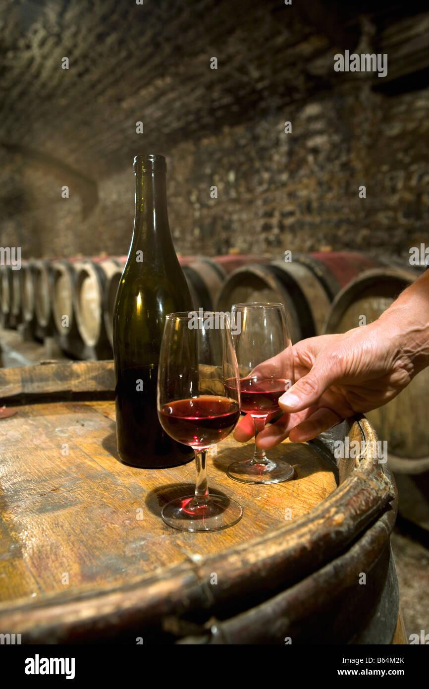 France, near Beaune, Burgundy, Wine tasting in wine cellar. - Stock Image