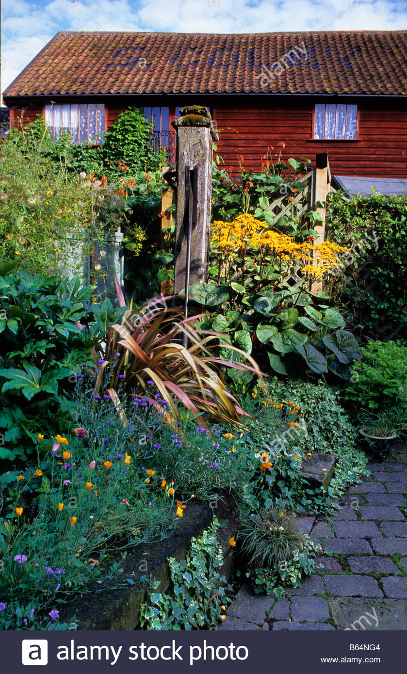 private garden Suffolk small courtyard garden with railway sleeper raised bed Phormium Ligularia runner beans - Stock Image