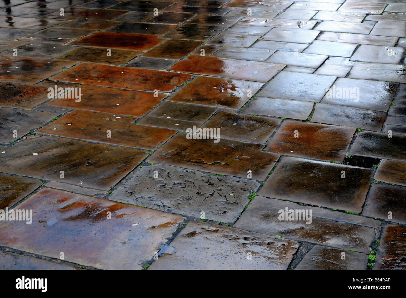 A flagstone pavement shines in the aftermath of a rain storm - Stock Image