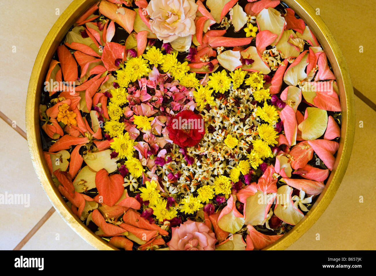 India, Mumbai, Maharashtra, Ayurvedic Therapy Center, Flowers at entrance of clinic. - Stock Image
