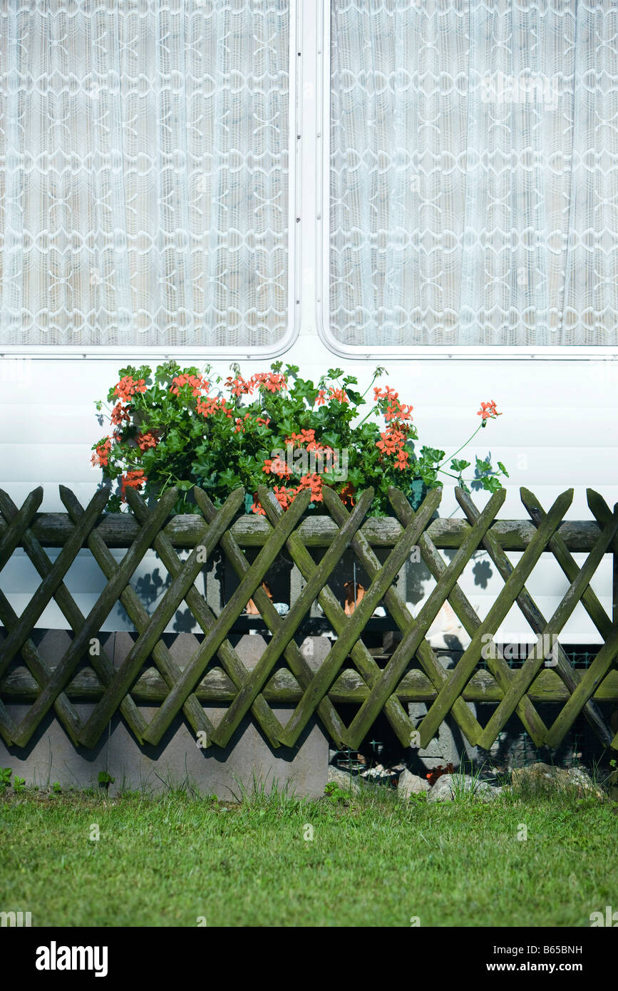 Geraniums in window box outside mobile home - Stock Image
