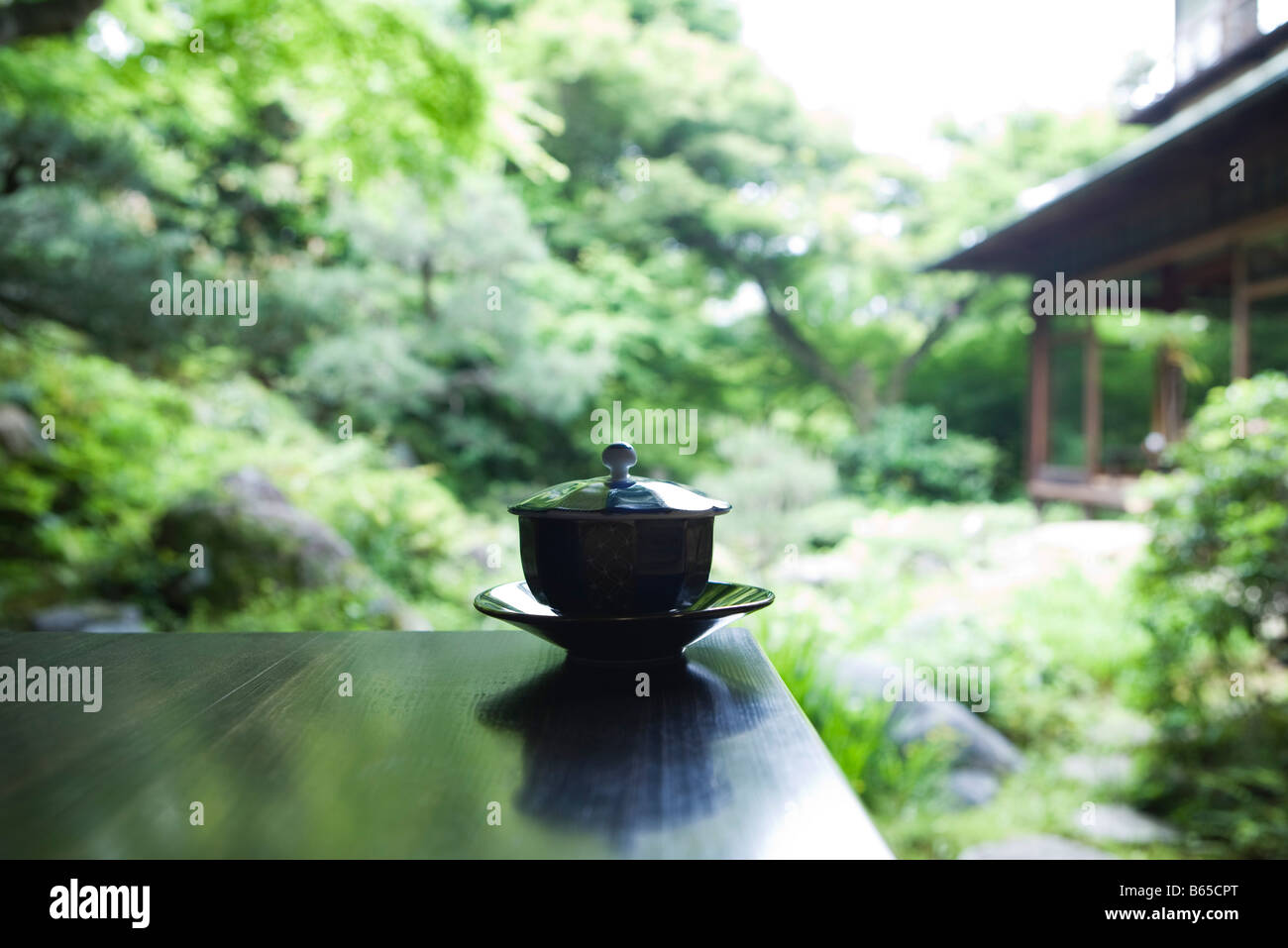 Covered tea cup and saucer on table, Japanese garden in background - Stock Image