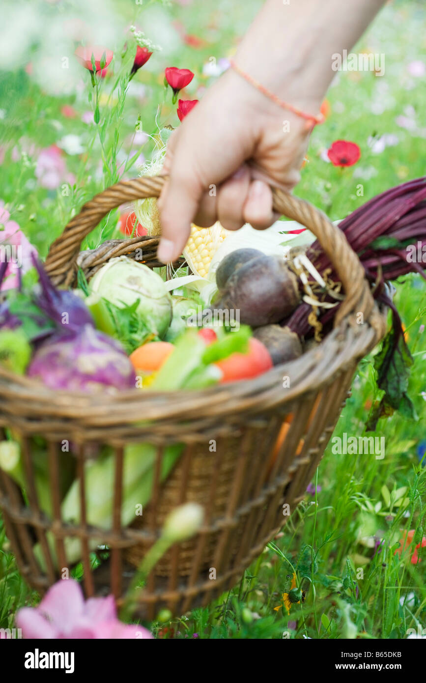 Hand picking up wooden basket of fresh produce - Stock Image