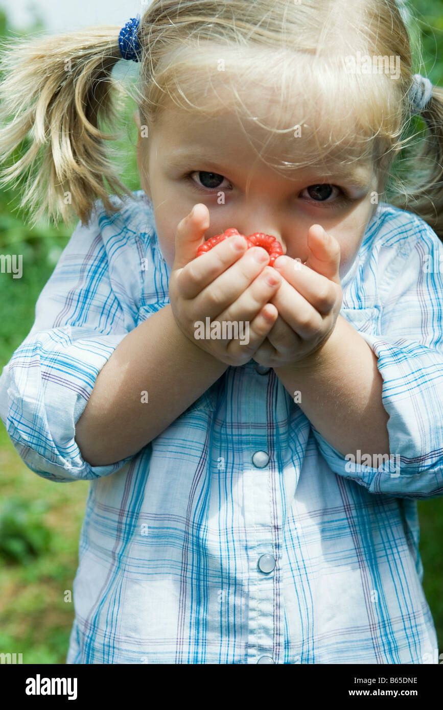 Little girl holding handful of raspberries up to her face - Stock Image