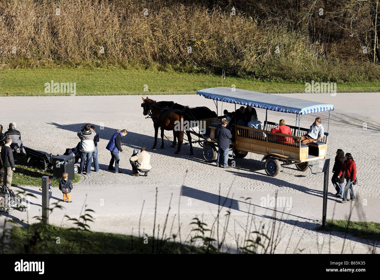 Horse drawn carriage on Herreninsel island, Chiemsee, Chiemgau, Upper Bavaria, Bavaria, Germany, Europe - Stock Image