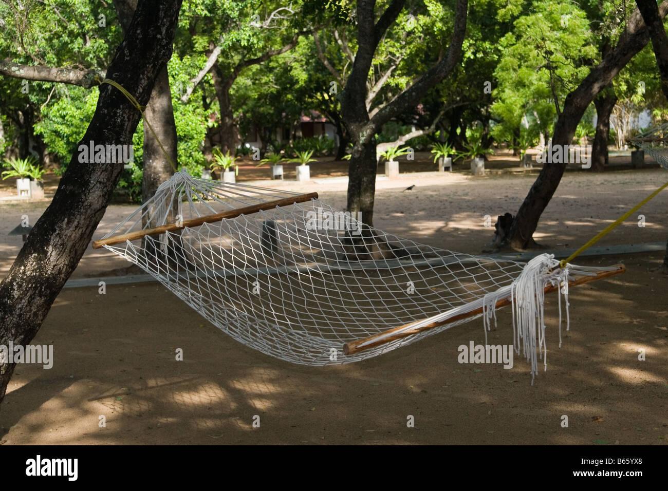 A hammock under shady green trees - Stock Image