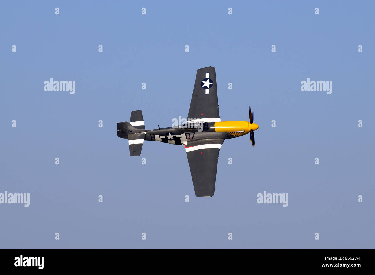 Ferocious Frankie Mustang P51D Stock Photo