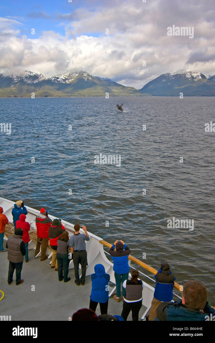 Whale watching aboard a cruise ship, Frederick Sound, Alaska - Stock Image