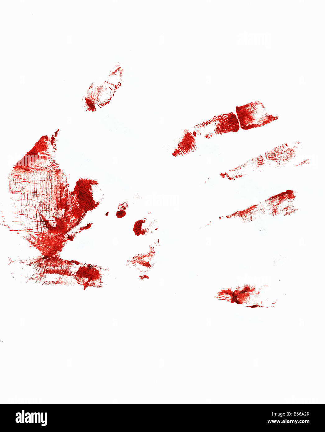 Bloody hand print on a white background - Stock Image