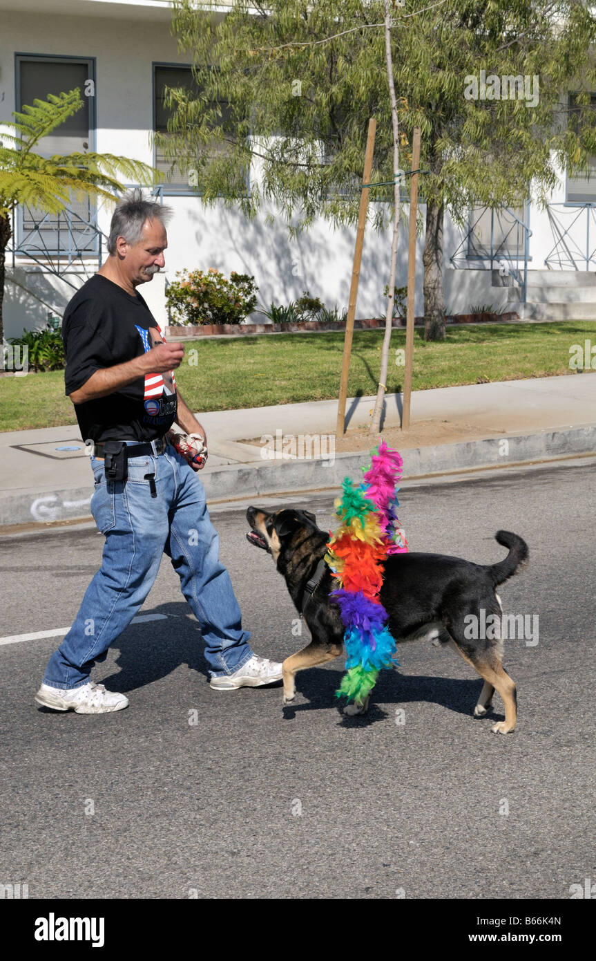 A local resident of Westchester, Los Angeles, California having fun with his obedient dog - Stock Image