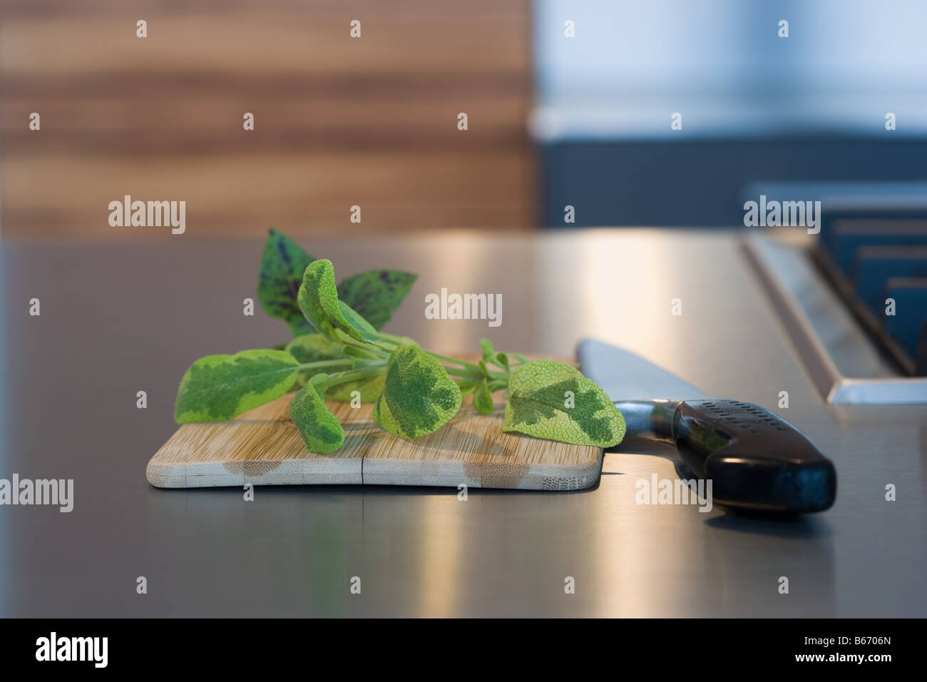 Herb cutting board and knife - Stock Image