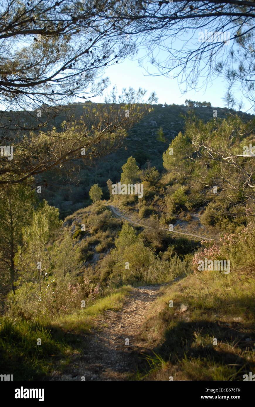 track to Els Tolls, near Vall de Ebo village, Marina Alta, Alicante Prov. Comunidad Valenciana, Spain - Stock Image
