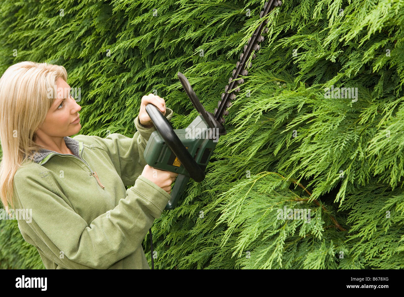 Woman trimming a hedge - Stock Image