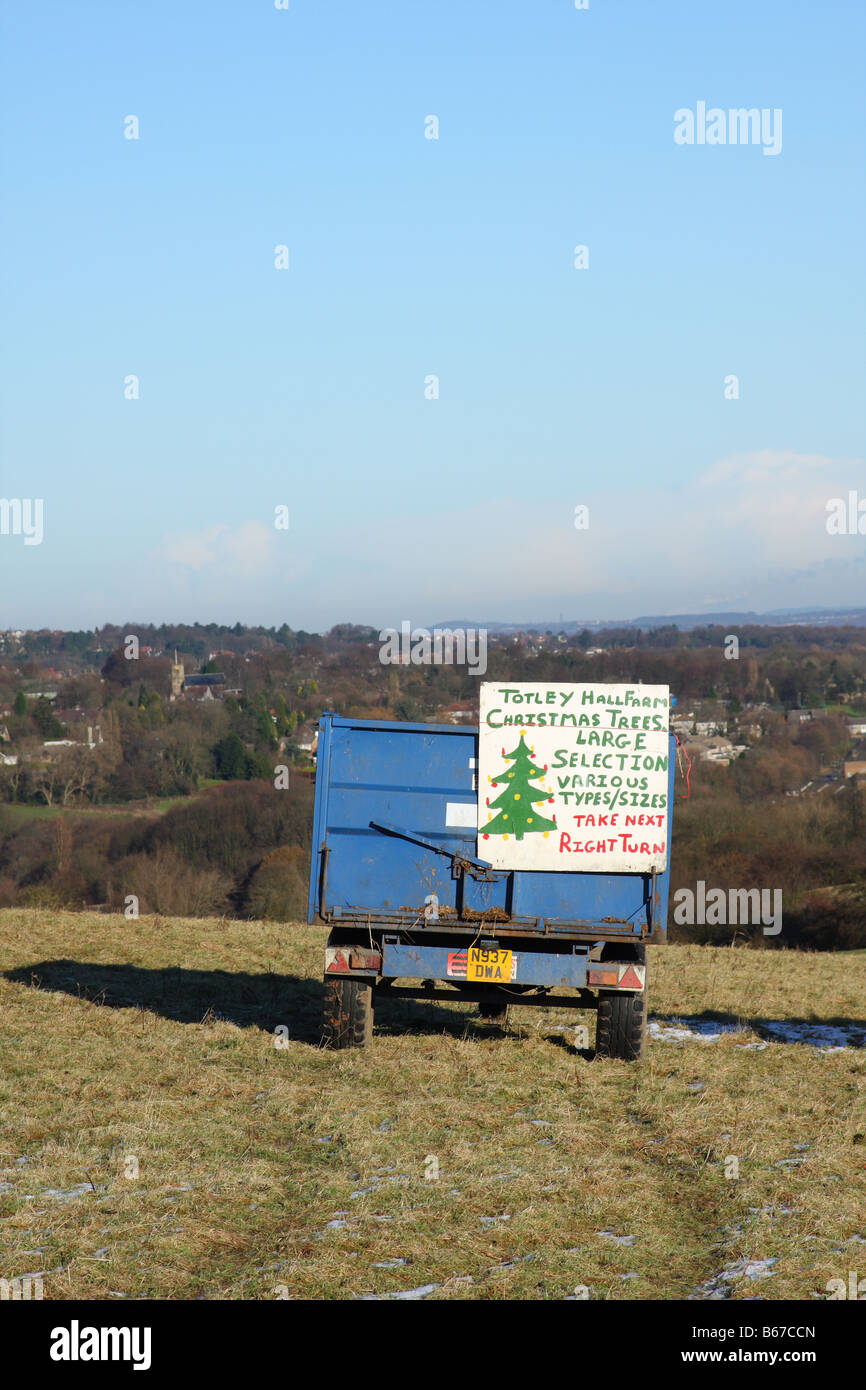 A trailer advertising Christmas trees for sale in a field in the U.K. - Stock Image