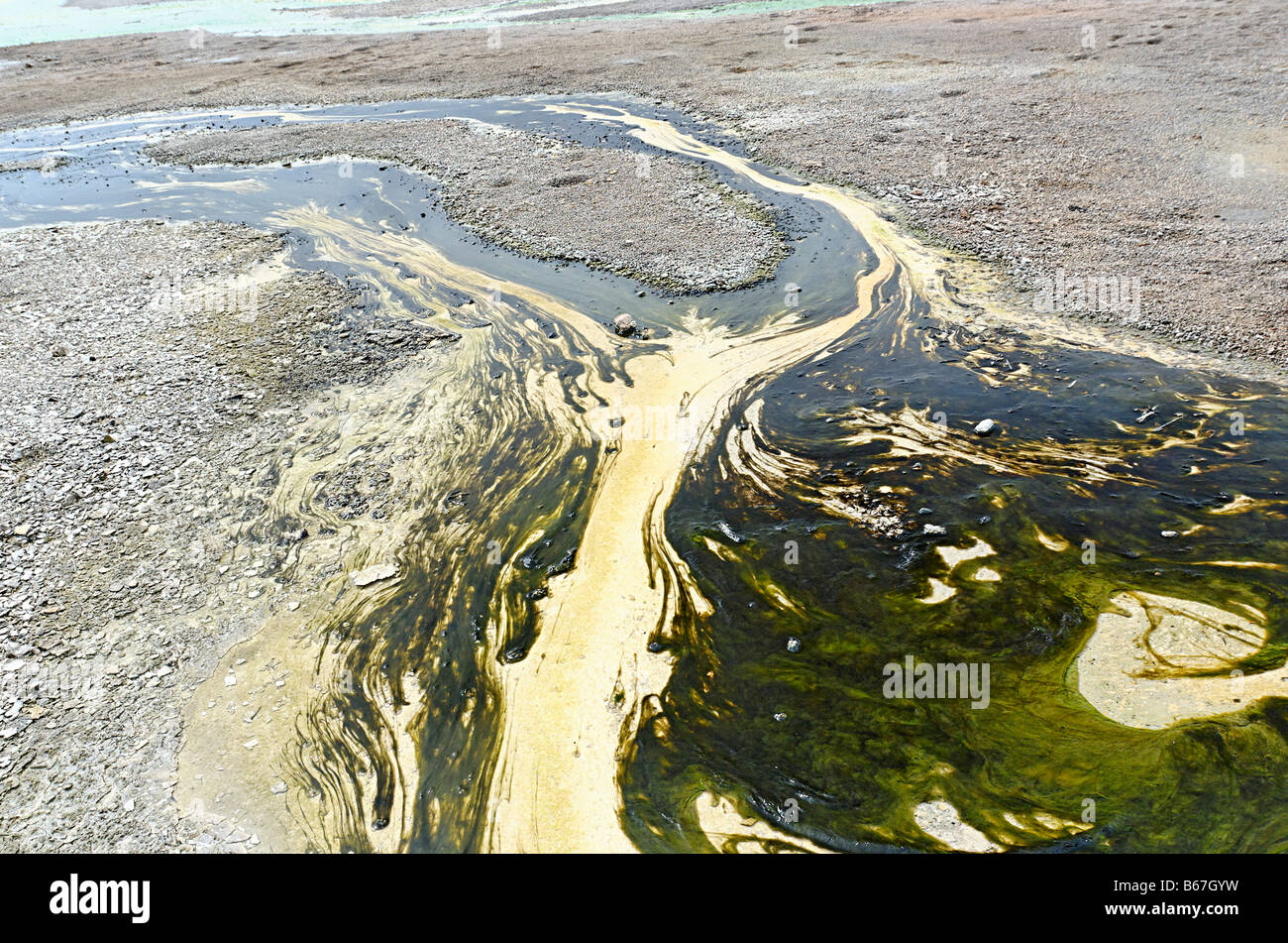 Runoff of a hot spring with algae and bacteria. - Stock Image