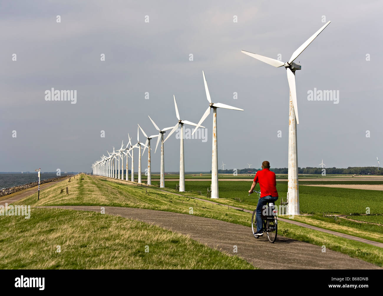 Man cycling on dyke at Essent windpark Westermeerdijk Netherlands - Stock Image