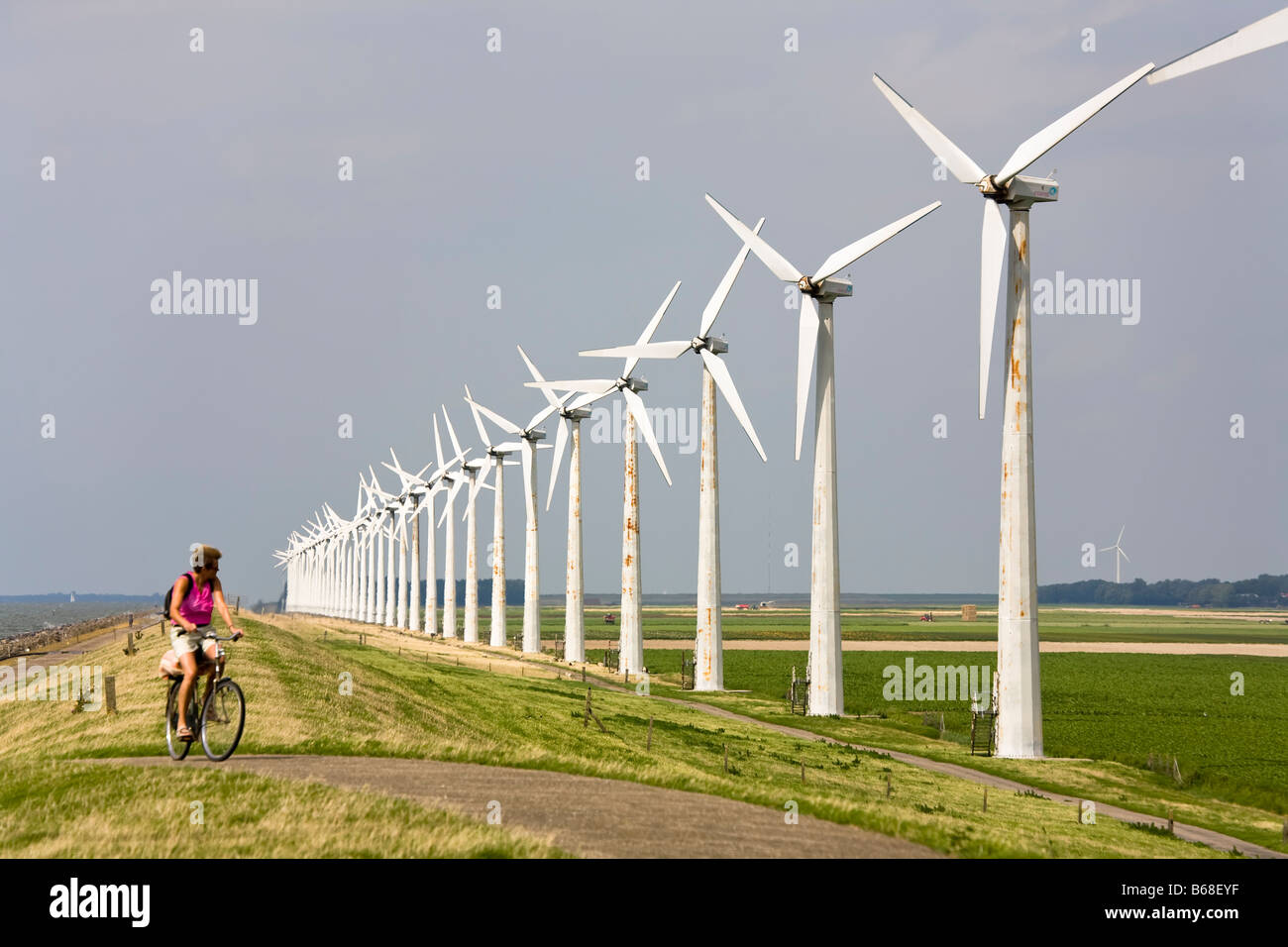 Wind farm turbines on dyke Essent windpark Westermeerdijk Netherlands - Stock Image