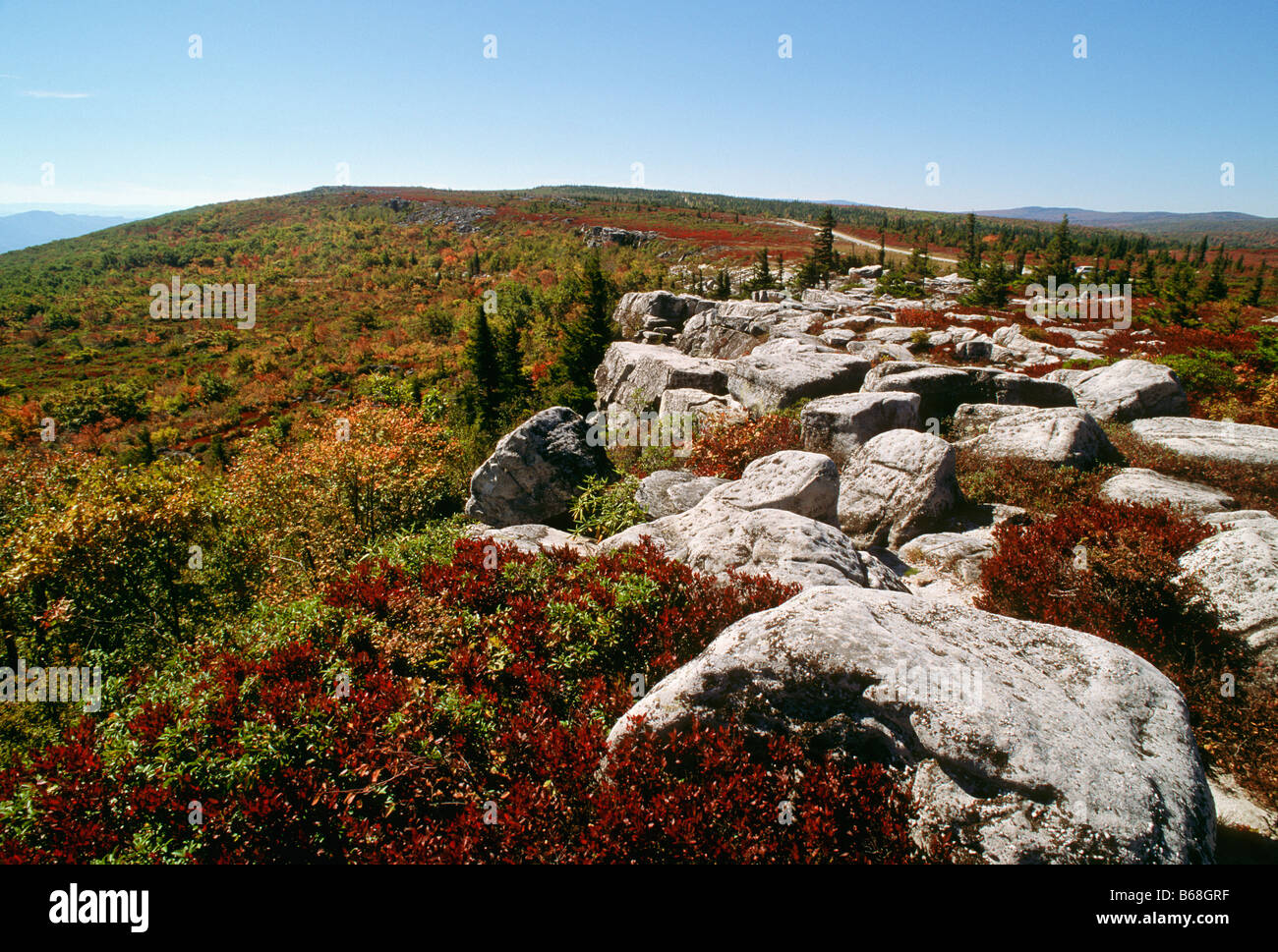 Mountain overlook Dolly Sods West Virginia - Stock Image