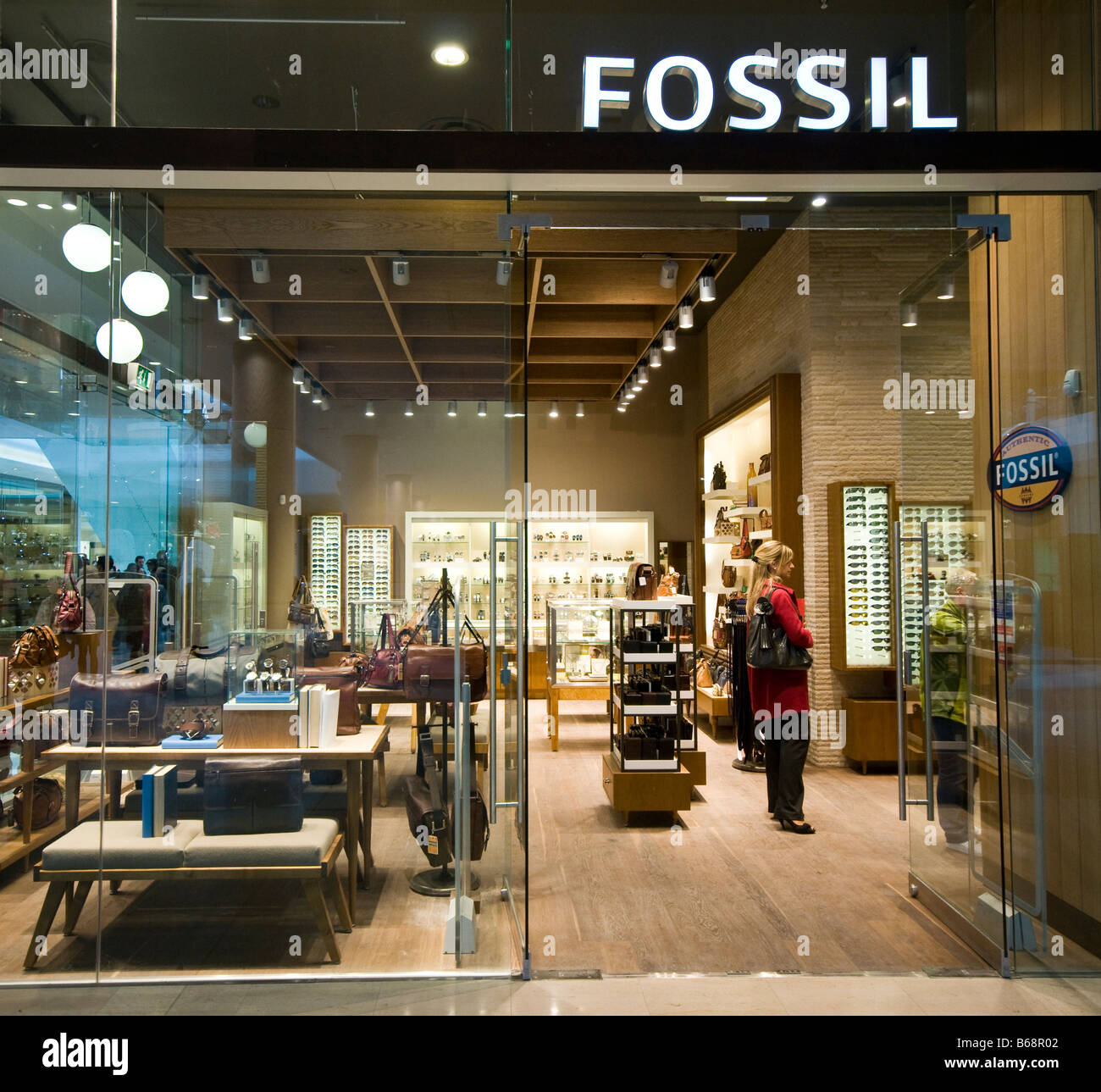 Fossil - Stock Image