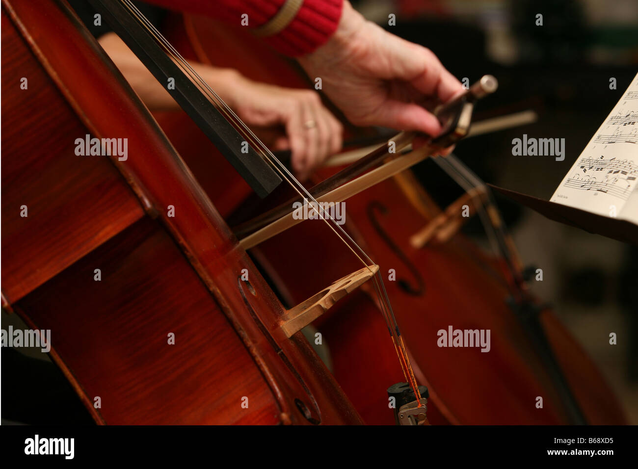Cellists playing duets - Stock Image