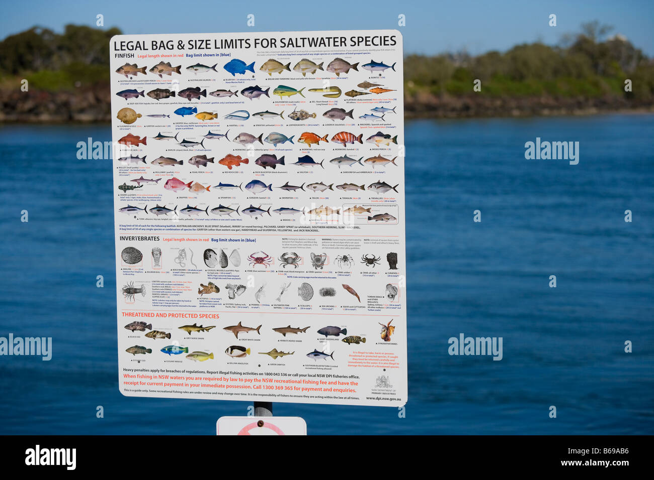 Legal bag and size limits for saltwater fish fishing on the Australian Pacific Ocean's Gold Coast in Coolangatta - Stock Image