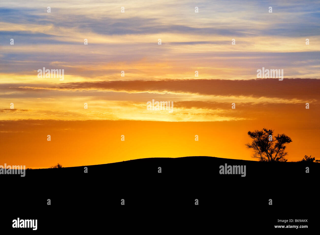 Sunset silhouette at Yunta South Australia - Stock Image