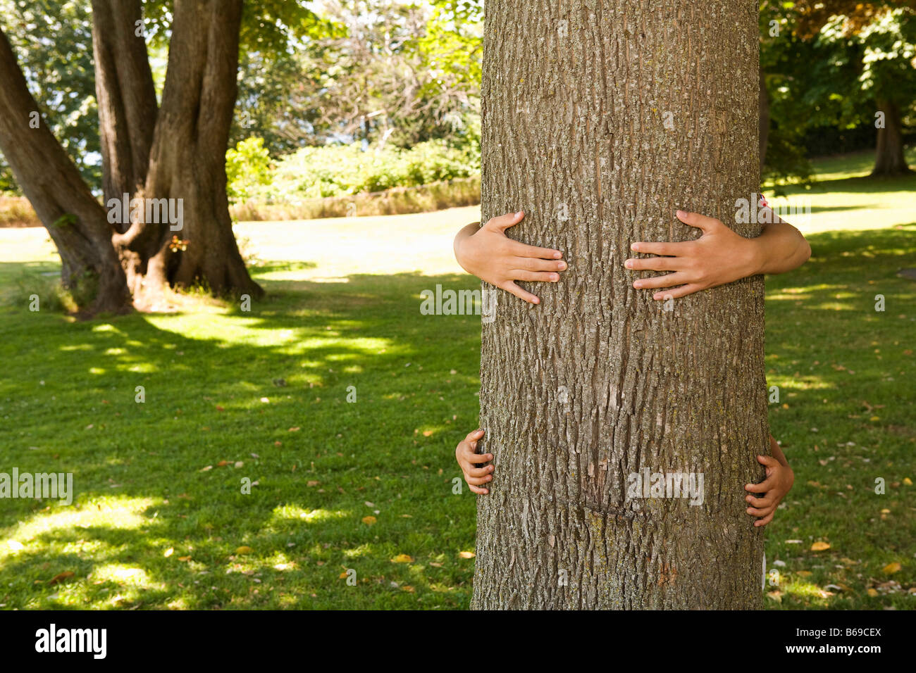 Two children hugging a tree trunk - Stock Image
