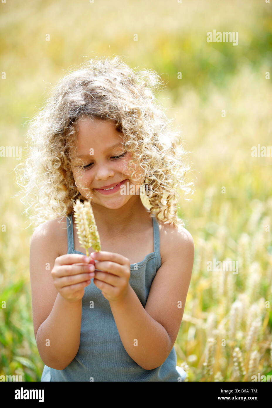 Young girl with ears of corn in field - Stock Image