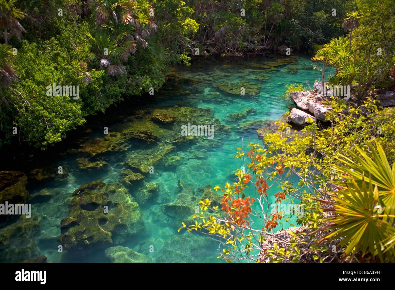 Mexico Quintana Roo Xel Ha Xel Ha Nature Marine Park